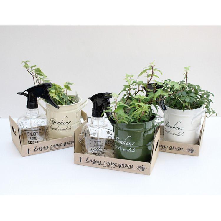 ガーデン スパイス アクアテラポット セット スプレー付 ボックス GREEN HAK16022-BOX マルシェ風 ボヌールポット SPICE 12個 | ギフト スプレー 10.5 観葉植物 植物