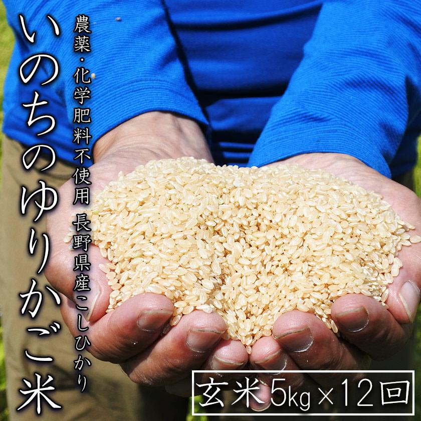 【定期配送】無農薬 玄米 コシヒカリ いのちのゆりかご米 5kg×12回(合計60kg)【信州伊那谷 あきづ農園】