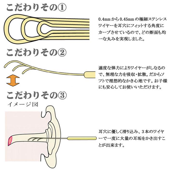 耳垢 タイプ