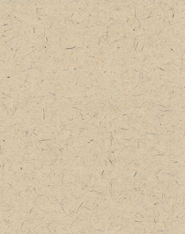 Tosa washi wallpaper light catalyst hinokibrown (wallpaper / kabe紙 / cross / SIP / shop)