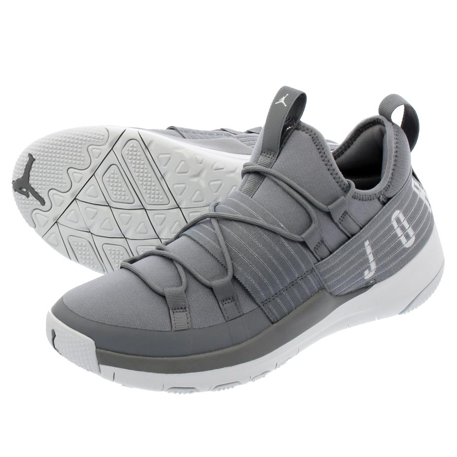 5d893babba9c NIKE JORDAN TRAINER PRO Nike Jordan trainer pro COOL GREY PURE PLATINUM  aa1344-004