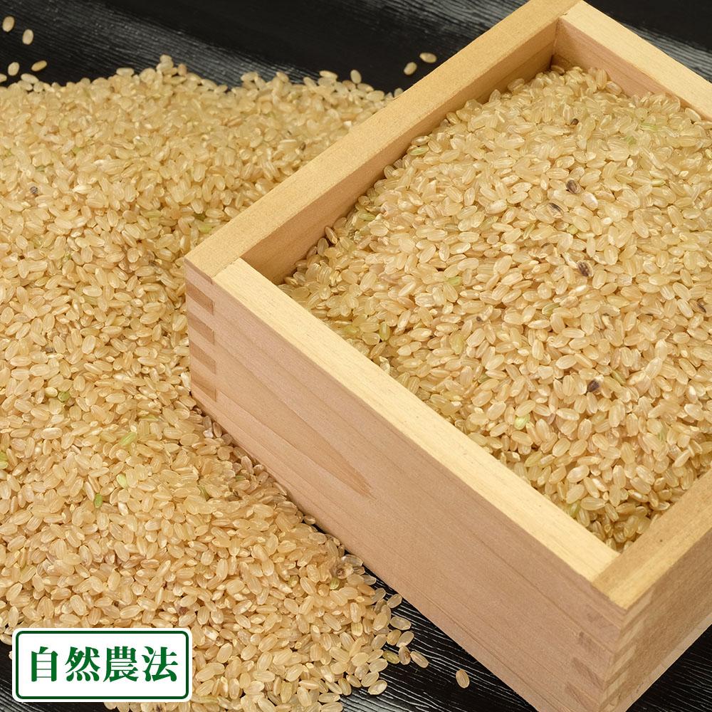 【令和元年度産】つがるロマン 玄米 20kg 自然農法 (青森県 津軽自然農法研究会) 産地直送