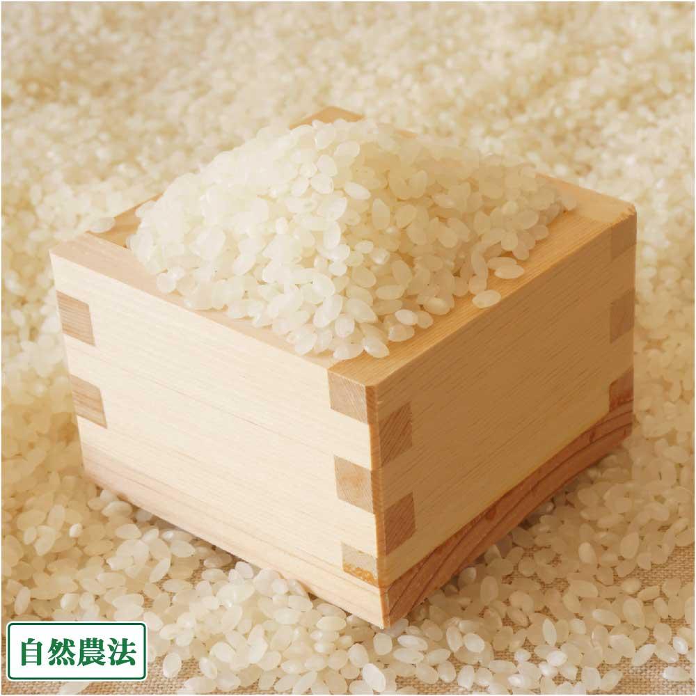 【令和元年度産】 コシヒカリ 白米・玄米 20kg 自然農法 (山形県 佐藤農園) 産地直送