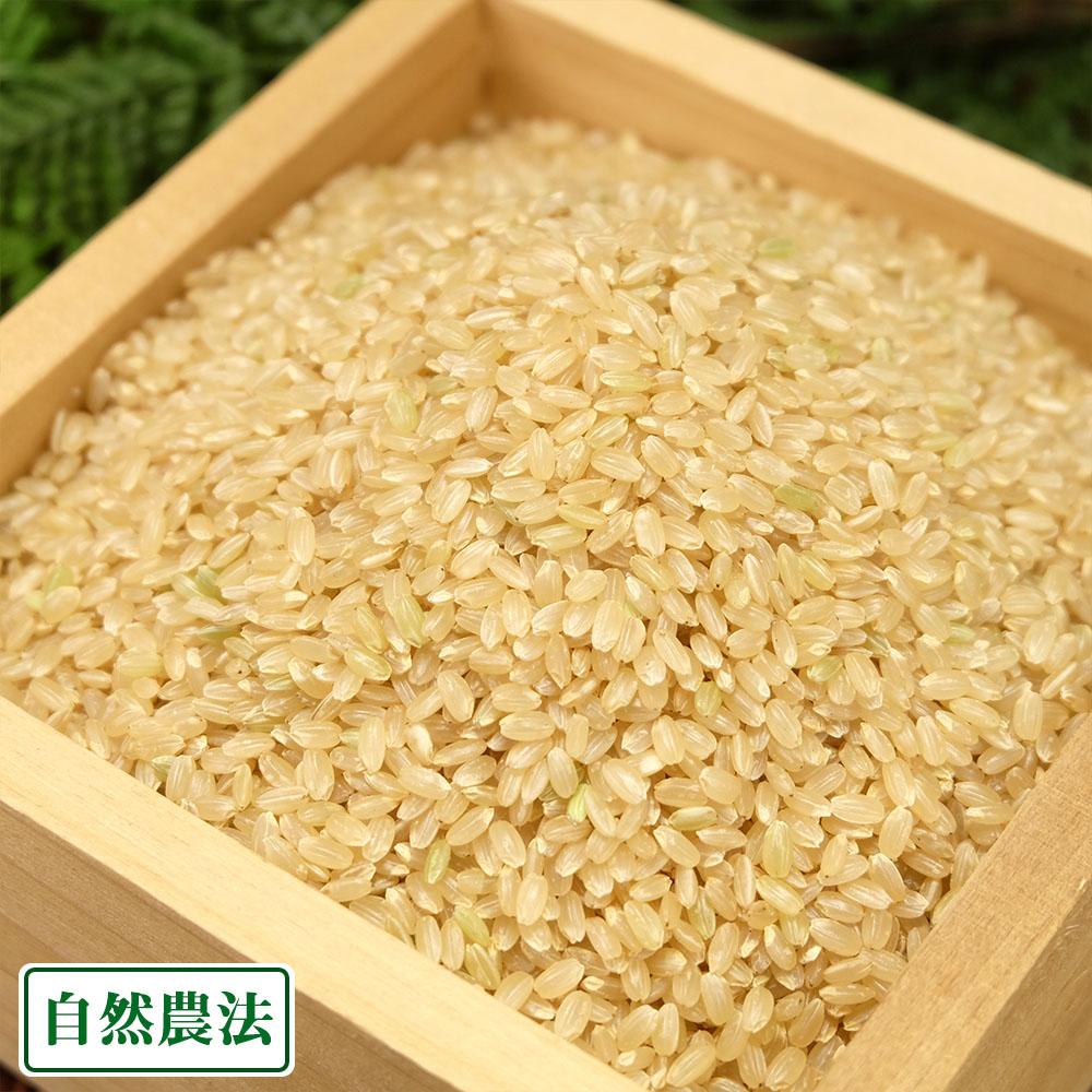 [30年度米] 河原さんのお米 玄米30kg 自然農法無農薬米(岡山県 河原農園) 産地直送