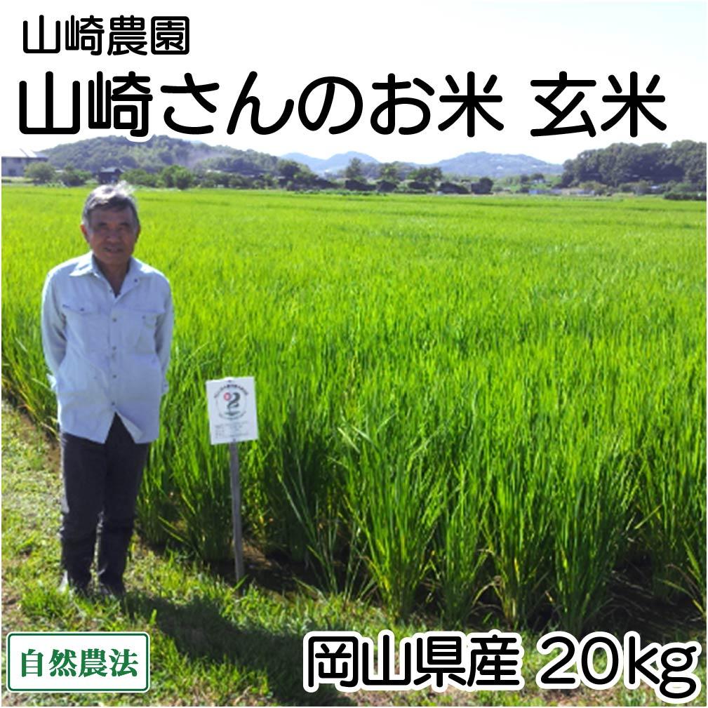 【30年度産】山崎さんのお米 玄米 20kg 自然農法 (岡山県 山崎農園) 産地直送