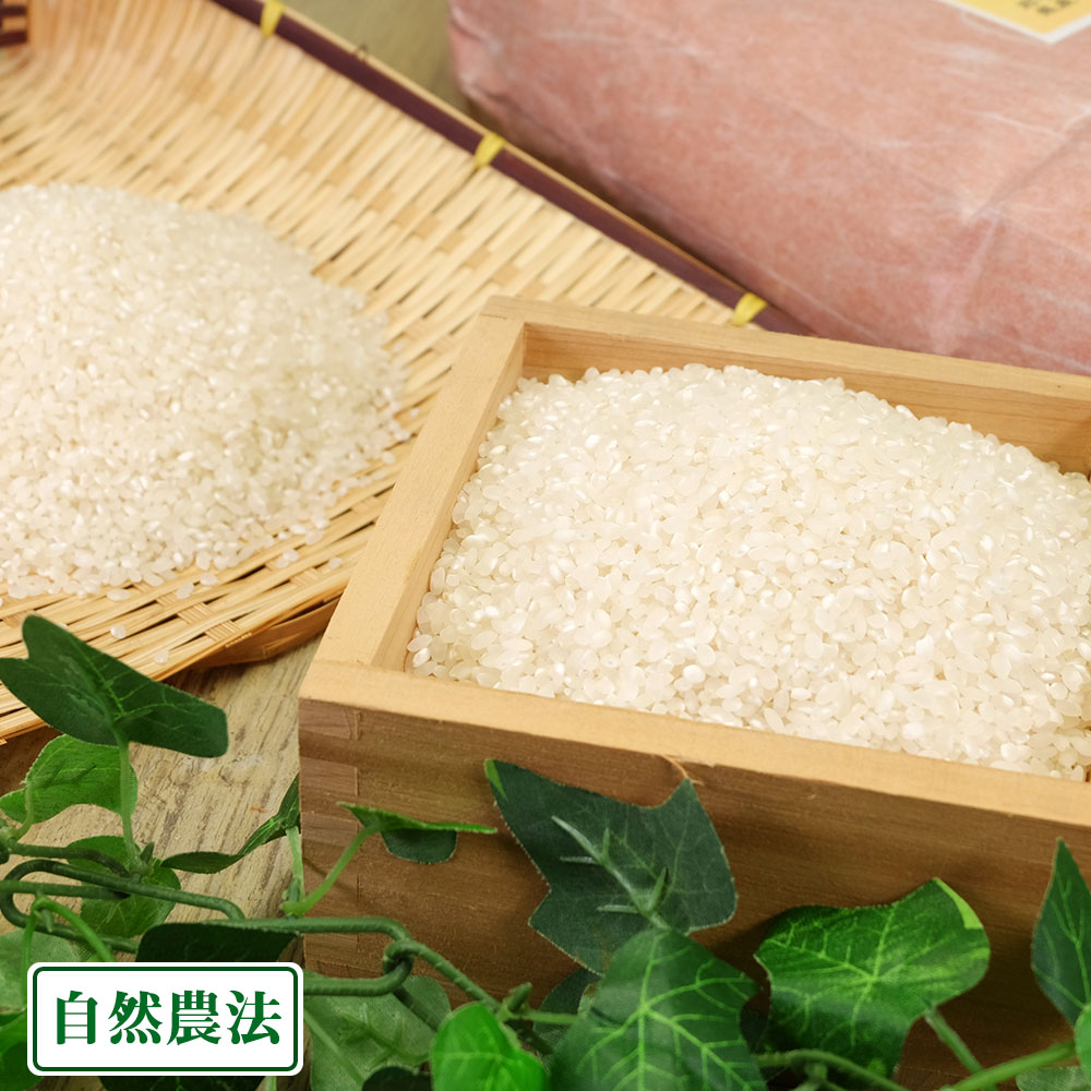 ササシグレ はさがけ米 白米 10kg 自然農法 (岩手県 木こり菊池農園) 産地直送