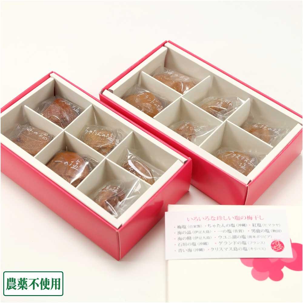 12種類の塩を楽しめる梅干しセット 12個×3セット 農薬不使用 (群馬県 ゆあさ農園) 産地直送