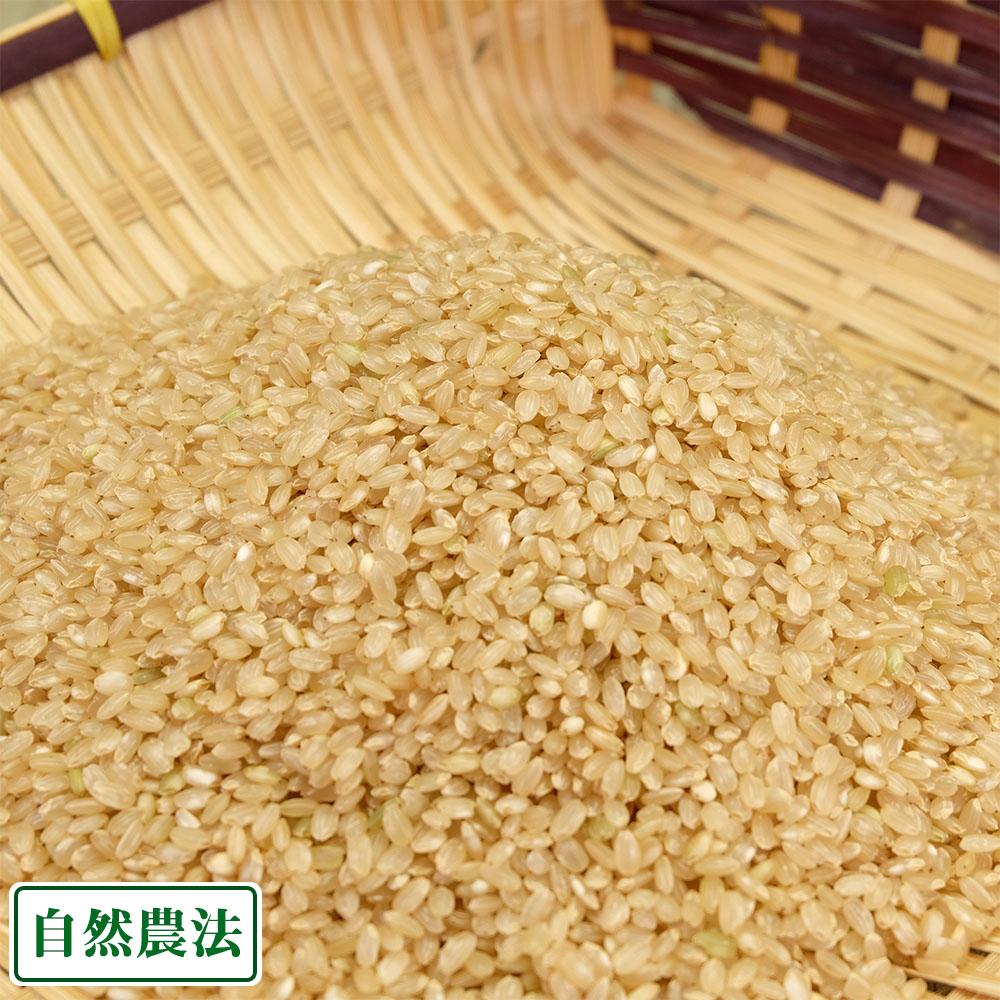 【令和元年度産】あきたこまち 玄米20kg 自然農法 (青森県 アグリメイト南郷) 産地直送