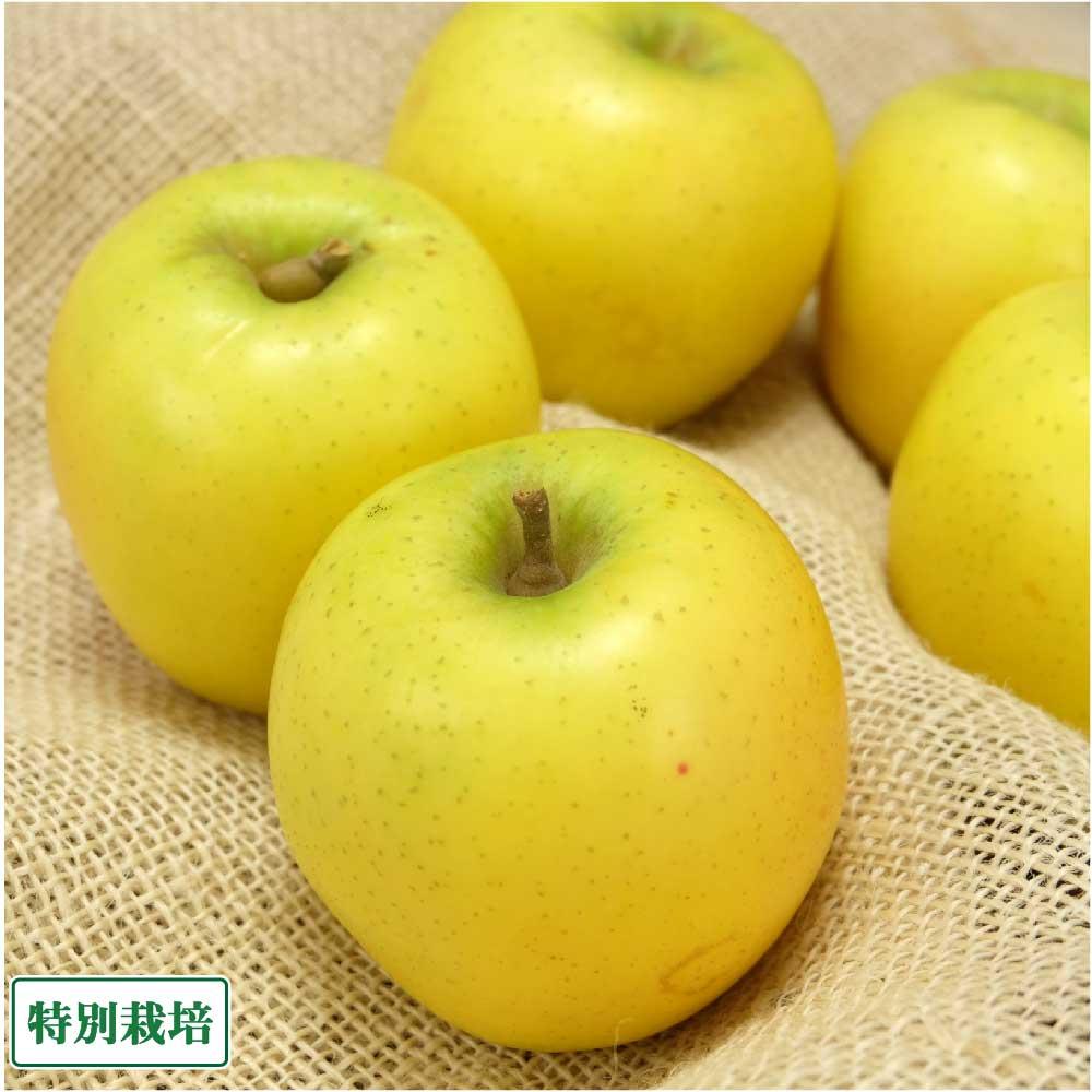 【家庭用】 無・無 黄色 りんご 4種セット 12kg箱 特別栽培 (青森県 北上農園) 産地直送