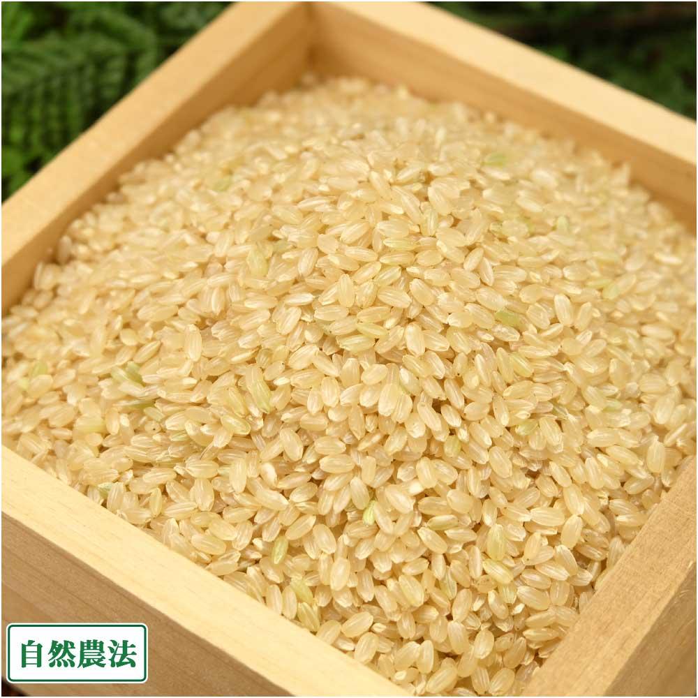 【セール】【令和元年産】岡山県産米 玄米 30kg 自然農法 (岡山県 自然農法中国支所倉敷 )