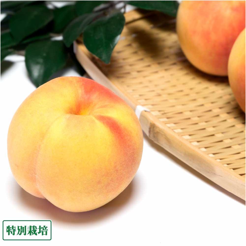 卓出 南国フルーツのような桃独特の豊潤な香りと甘さが特徴の桃 家庭用小玉 黄桃 約2.5kg 高い素材 産地直送 特別栽培 森谷農園 山形県