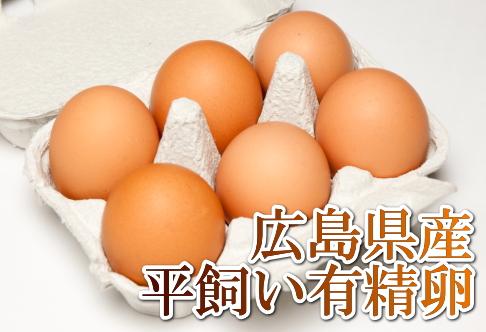 日本で唯一の国産鶏 もみじ より採れたこだわり卵 平飼い有精卵 ついに再販開始 6個×6パック はやしなちゅらるふぁーむ 送料無料 広島県 産地直送 健康たまご ブランド買うならブランドオフ