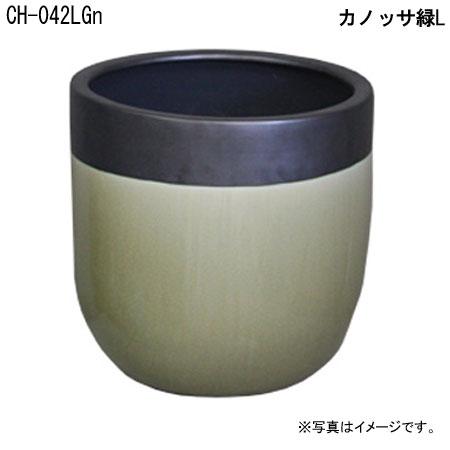 カノッサ緑L CH-042LGn