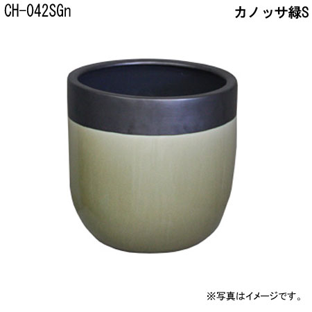 カノッサ緑S CH-042SGn