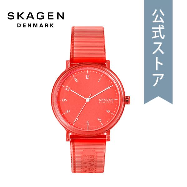 【6/4 20時~ スーパーセール限定 ポイント10倍!】2020 春の新作 スカーゲン メンズ 腕時計 Skagen 時計 SKW6603 AAREN 公式 2年 保証