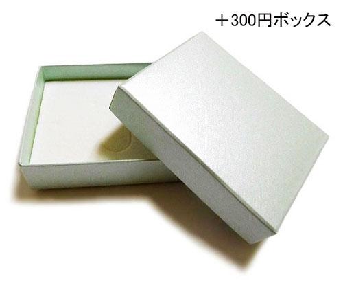 [星的腳鐲的紫水晶 & 銀] auktn02P05Sep15
