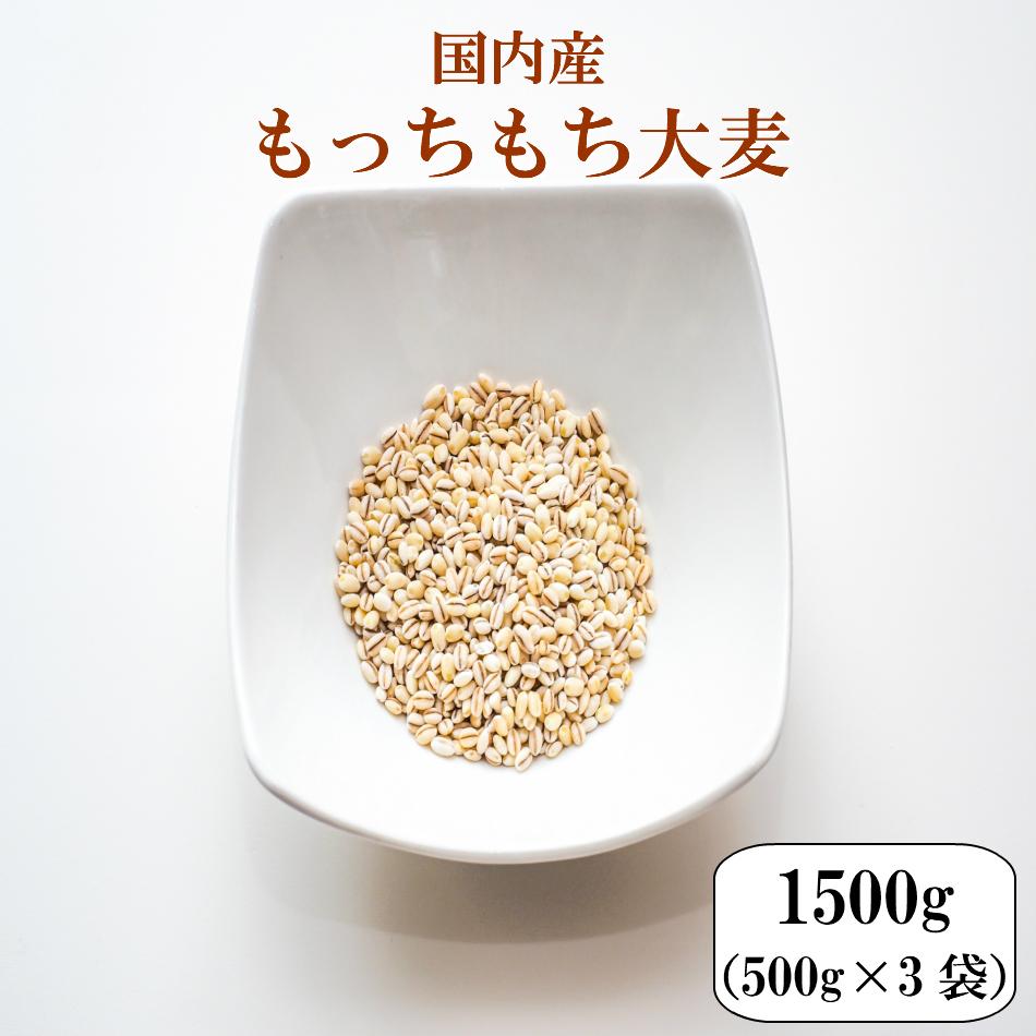 ※ もち麦 ではありません 美容 ダイエット健康を意識した方に是非ご賞味下さい 大麦 国内産もっちもち大麦 1.5kg 入手困難 500g×3袋 α化 ポイント消化 送料無料 もち麦の代わりに 2kg以下 お試し メール便 古代米 食品 健康 雑穀 ダイエット 雑穀米 販売 安い