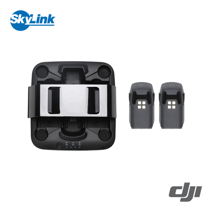 Spark ポータブル充電ステーション + バッテリー2個 DJI