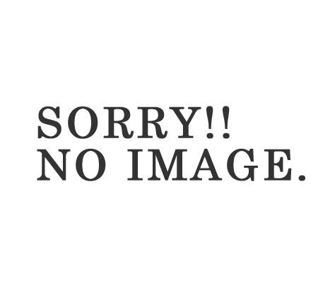 研究员 /PHERROW (PHERROWS) '秋天-冬天模型' 脚踝长锥形裤 (16W-PACP1)