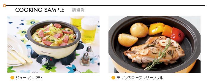 recolte 烧烤盘 (可选部分锅双核处理器) 和 Rekord