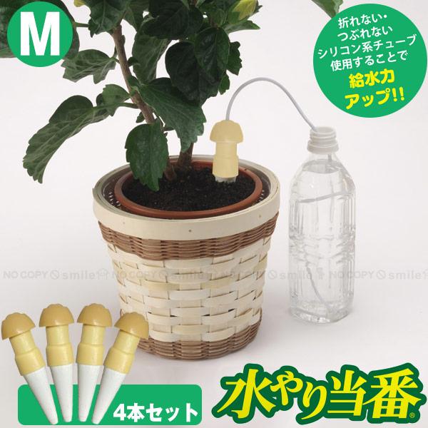 水やり サイフォン 毛細管現象 商店 自動 自動給水栓 鉢 プランター 観葉植物 お買い得4本セット 水やり当番 留守 旅行 倉 M M8