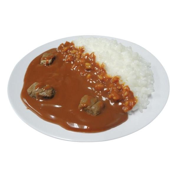 【代引料無料】日本職人が作る 食品サンプル カレーライス IP-157