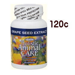 アズミラ グレープシード・エクストラクト 120カプセル 抗酸化 犬 猫【YOUNG zone】