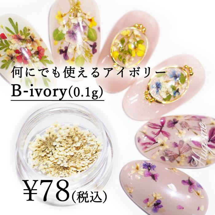Bシリーズ B-ivory 0 1g入り どんなアートにも相性抜群 押し花 ネイルアート お気にいる アクセサリー エスミント ドライフラワー アクセサリーパーツ 花材 ナチュラル 有名な ハンドメイド 押し花ネイル ネイルパーツ