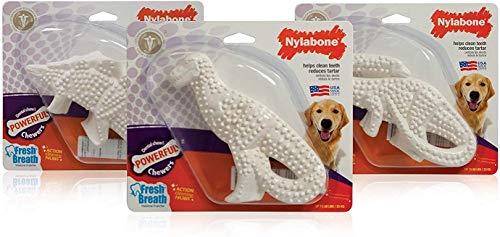 超人気 犬用歯磨きおもちゃナイラボーン デンタルダイナソー ランダム お洒落 3個セット