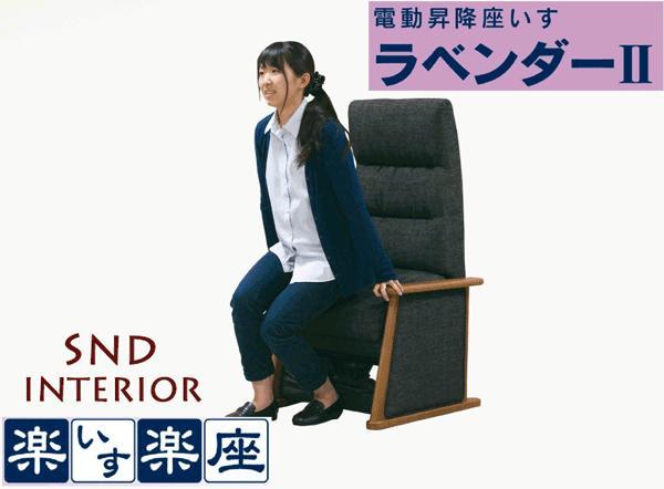 【送料無料】馬場家具 ラベンダー2【座イス 起立補助 リクライニング】