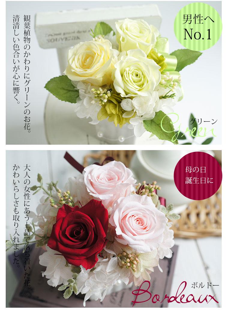 Snowball Preserved Flowers Sympathy Retirement Celebration Flowers