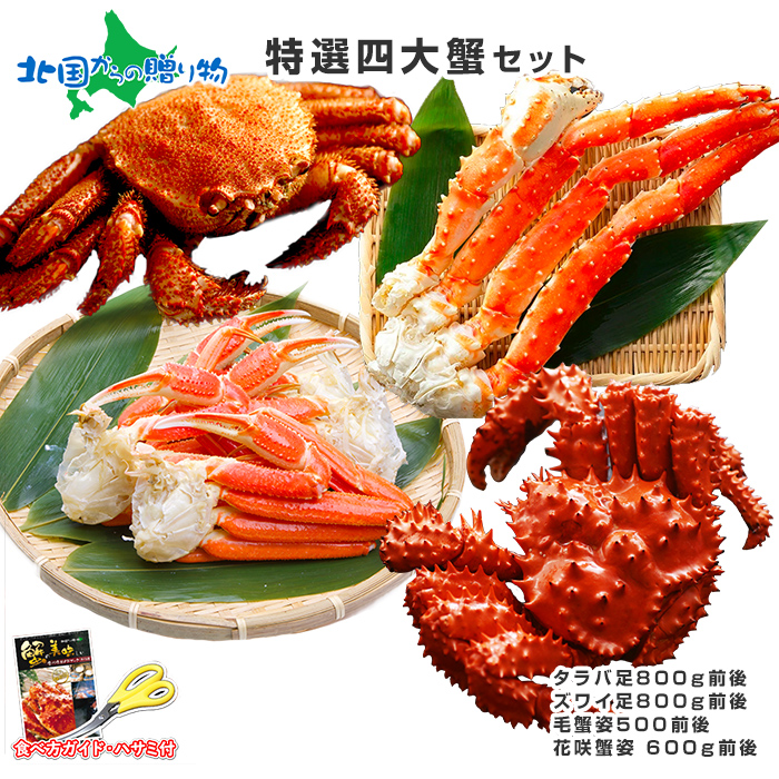 Fresh abalone crab galore set (horsehair crab and snow crab / King crab) gourmet gift / gifts / your gifts /