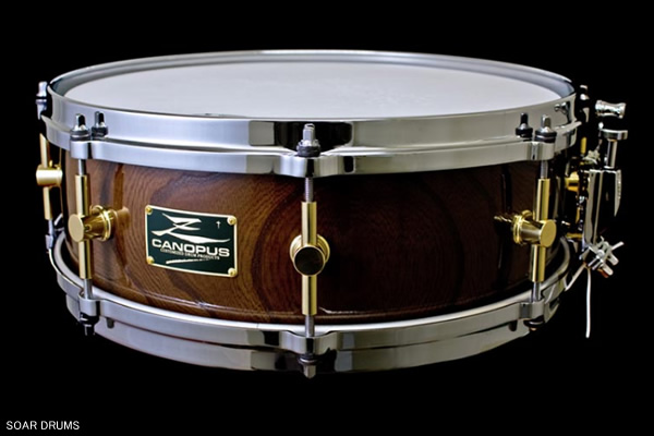 CANOPUS カノウプス Zelkova Snare Drum 14