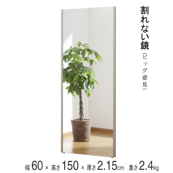 割れない鏡 ビッグ姿見 ミラー 太いフレーム シャンパンゴールド 幅60×高さ150×厚さ2.15cm 重さ2.4kg リフェクスミラー 軽量 姿見 全身 壁掛け 吊り下げ スタンドミラー 日本製 NRM-5-SG