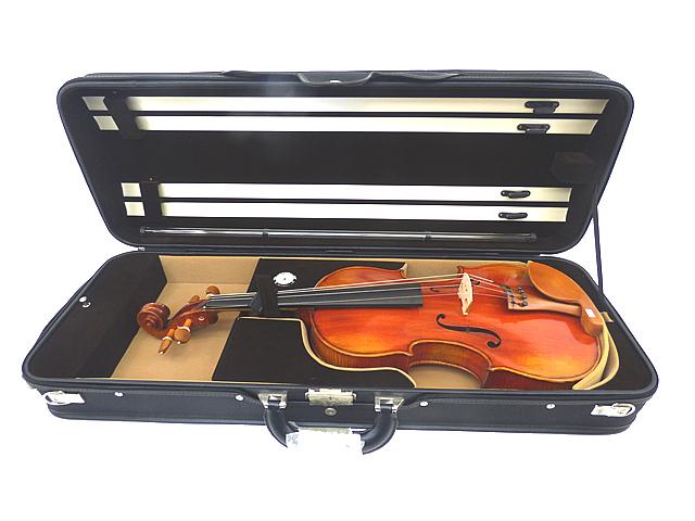 Viola Hard case 16