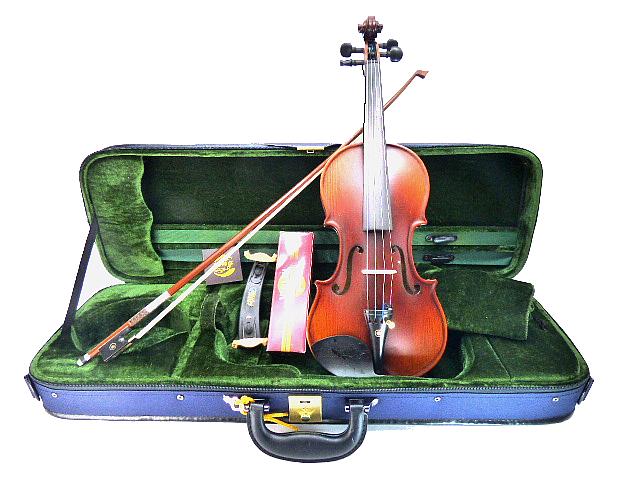 Drexcell Violin No.50 1/2 All Ebony Persian eye