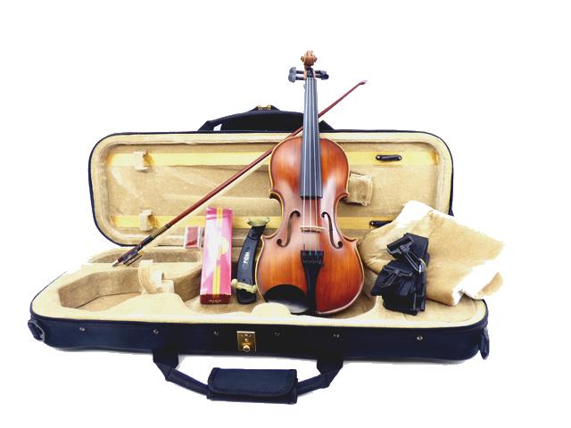 Standard バイオリン セットAnatique Model 1/2