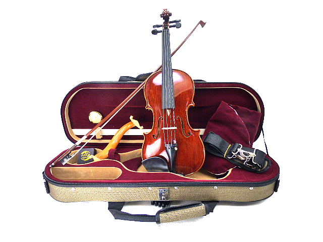 Drexcell Violin 3/4No.100 -All Ebony #2
