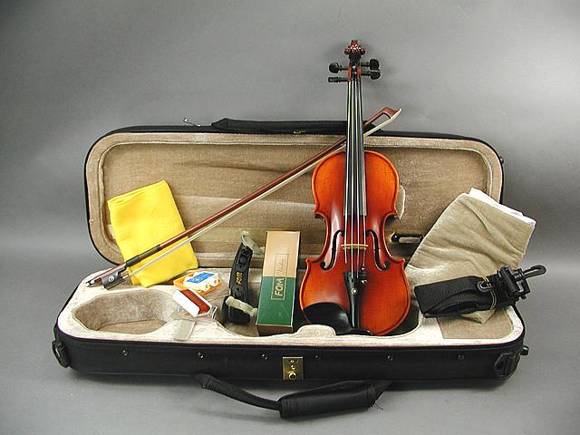 DLX バイオリン 1/4 パールアイ-2