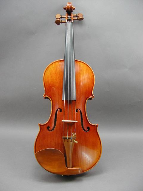 バイオリン ボックスウッド ヨーロピアン ブラックFT仕様 トーンウッド