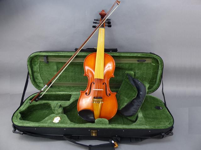 6弦 バイオリン 02