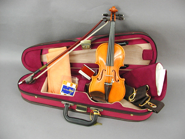 Luthier Violin Series Series Violin 1 Rosewood/32 Rosewood, 夢の小屋:c19fc415 --- sunward.msk.ru