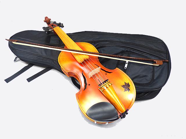 ヴィオラ インチ・ダモーレ Viola d'amore #14バロックスタイル 15 1/2 1 Viola/2 インチ 5X5 弦, オオシカムラ:412a1623 --- officewill.xsrv.jp