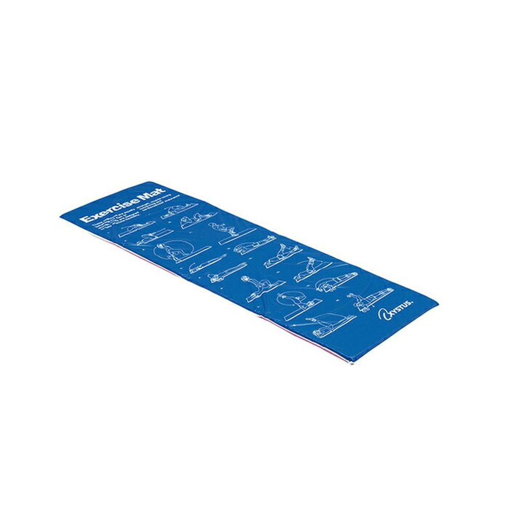 H9285 訳あり 16種類のエクササイズサンプルプリント入り 外被水拭き可能 トーエイライト 大注目 エクササイズマットST 筋トレ 健康管理 機能訓練 ダイエット トレーニング