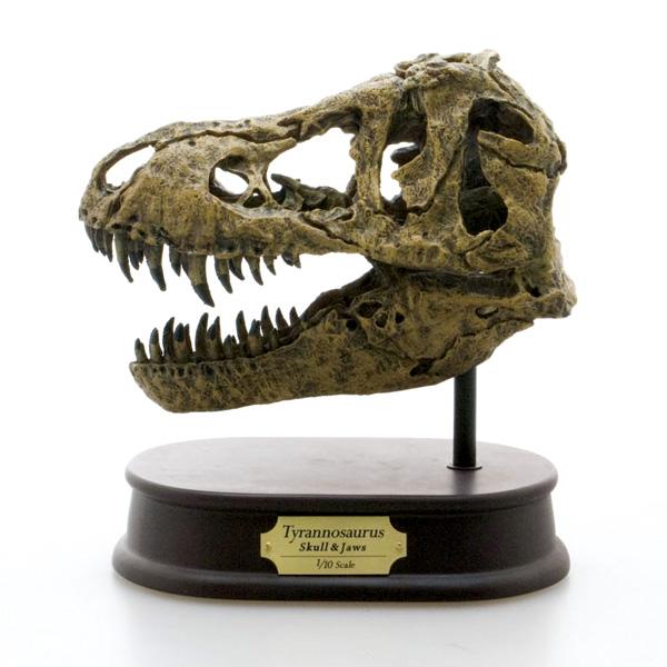 FAVORITE フェバリット 恐竜フィギュアスカル&ジョーズティラノサウルス スカル