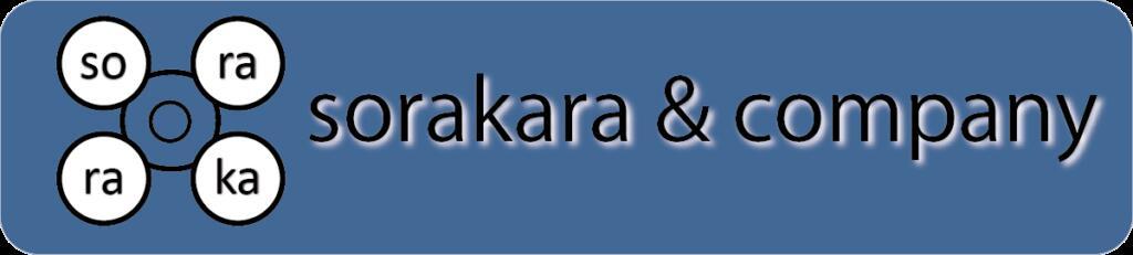 ドローンDJI関連商品専門SORAKARA:DJI認定特約店 ドローン・ローニン お洒落なハードケース・バックパック