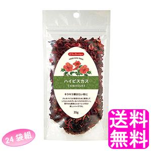 【送料無料】 ティーブティック ハーブミニパック ハイビスカス 【24袋組】 ■ 日本緑茶センター Tea Boutipue ハイビスカスフラワー