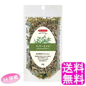 【送料無料】 ティーブティック ハーブミニパック ペパーミント 【24袋組】 ■ 日本緑茶センター Tea Boutipue ペパーミントリーフ メンソール