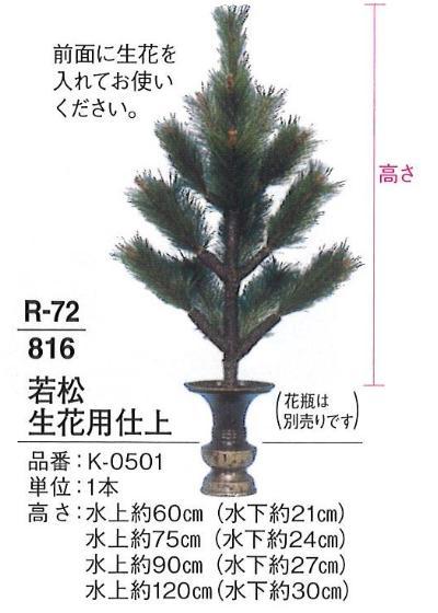 【寺院用品】【常花】 若松 生花用仕上 水上 約60cm 1本 【送料無料】