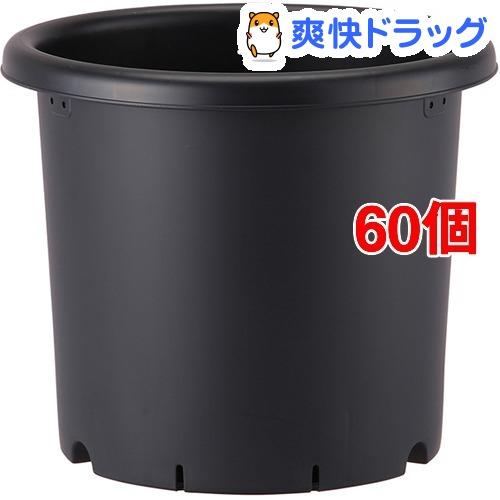 菊鉢 6号 ブラック(60個セット)